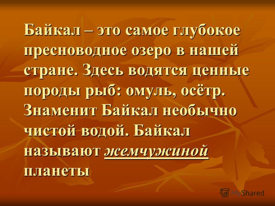 Байкал – это самое глубокое пресноводное озеро в нашей стране. Здесь водятся ценные породы рыб: омуль, осётр. Знаменит Байкал необычно чистой водой. Байкал называют жемчужиной планеты