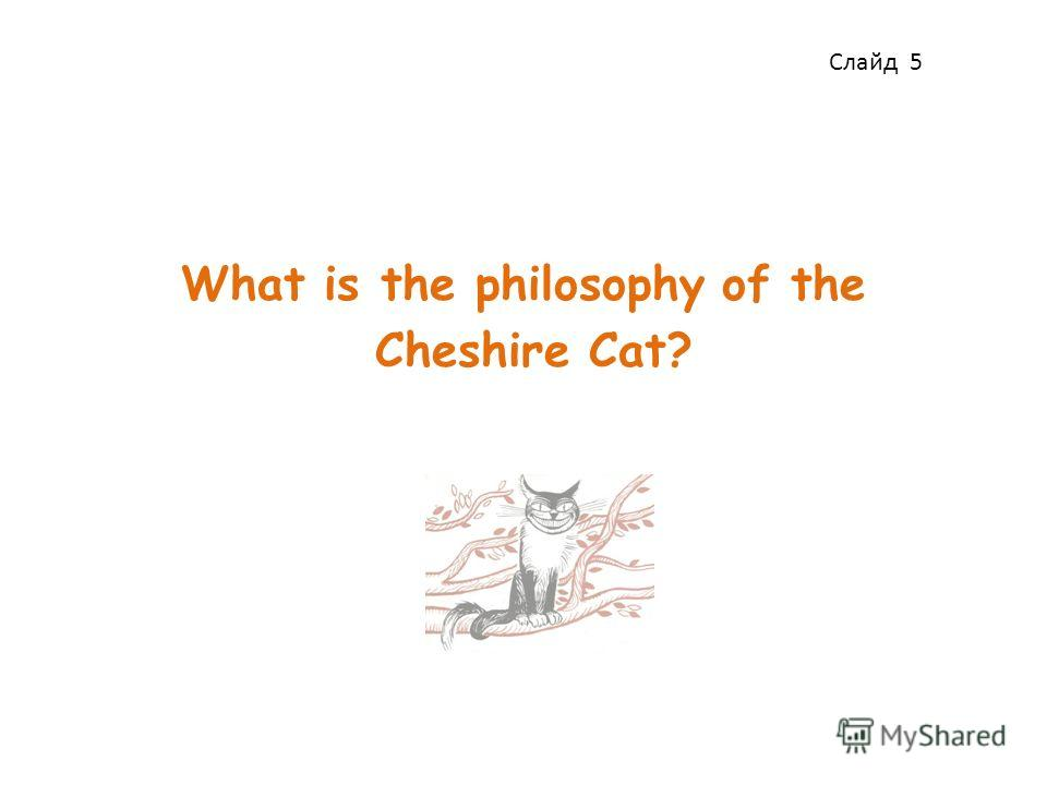 What is the philosophy of the Cheshire Cat? Слайд 5