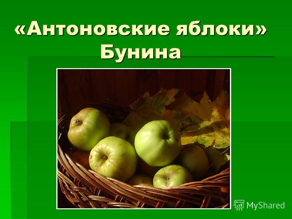 «Антоновские яблоки» Бунина