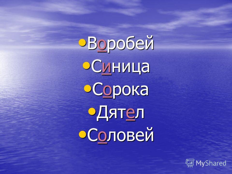 Воробей Воробей Синица Синица Сорока Сорока Дятел Дятел Соловей Соловей