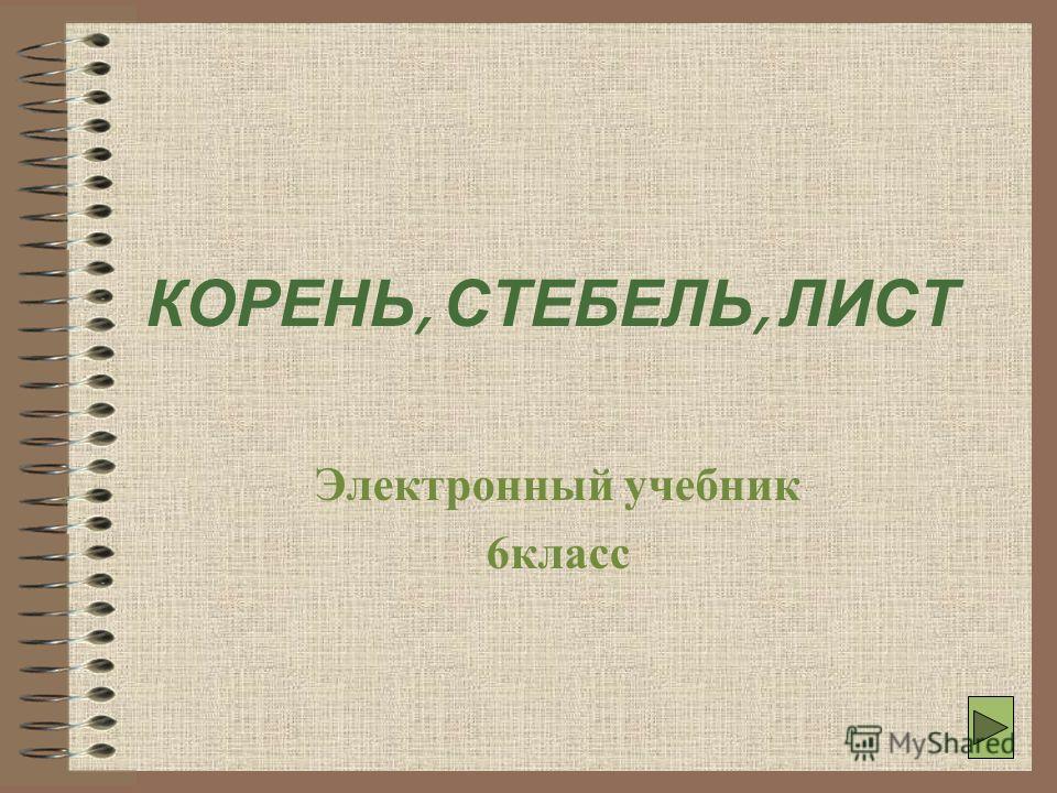 1 КОРЕНЬ, СТЕБЕЛЬ, ЛИСТ Электронный учебник 6класс