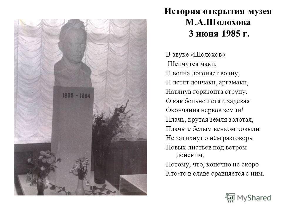 В 1985 года в школе 91 г. Ростова-на-Дону был открыт музей М. А. Шолохова, в результате большой кропотливой работы коллектива учителей, учащихся всех классов, а так же при содействии администрации завода – шефа – «Гранит». Музей школы – центр всей во