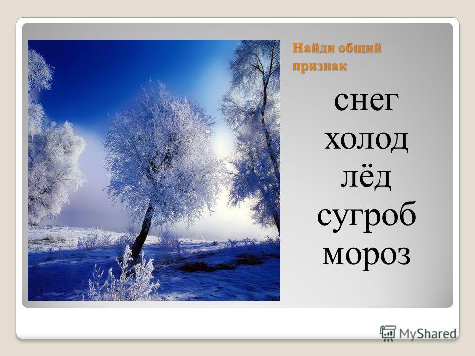 Найди общий признак снег холод лёд сугроб мороз