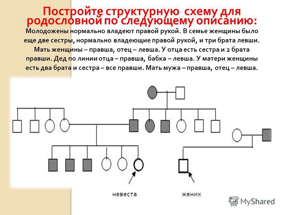 Постройте структурную схему для родословной по следующему описанию : Молодожены нормально владеют правой рукой. В семье женщины было еще две сестры, нормально владеющие правой рукой, и три брата левши. Мать женщины – правша, отец – левша. У отца есть