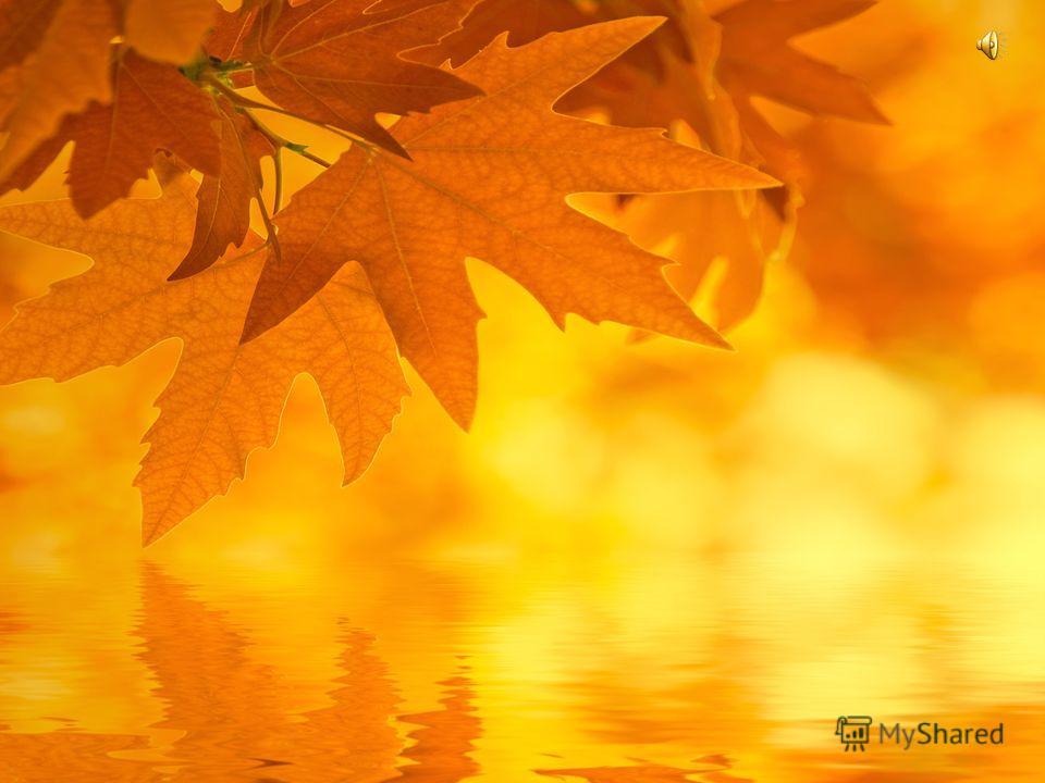Картинки лето листья подставляли