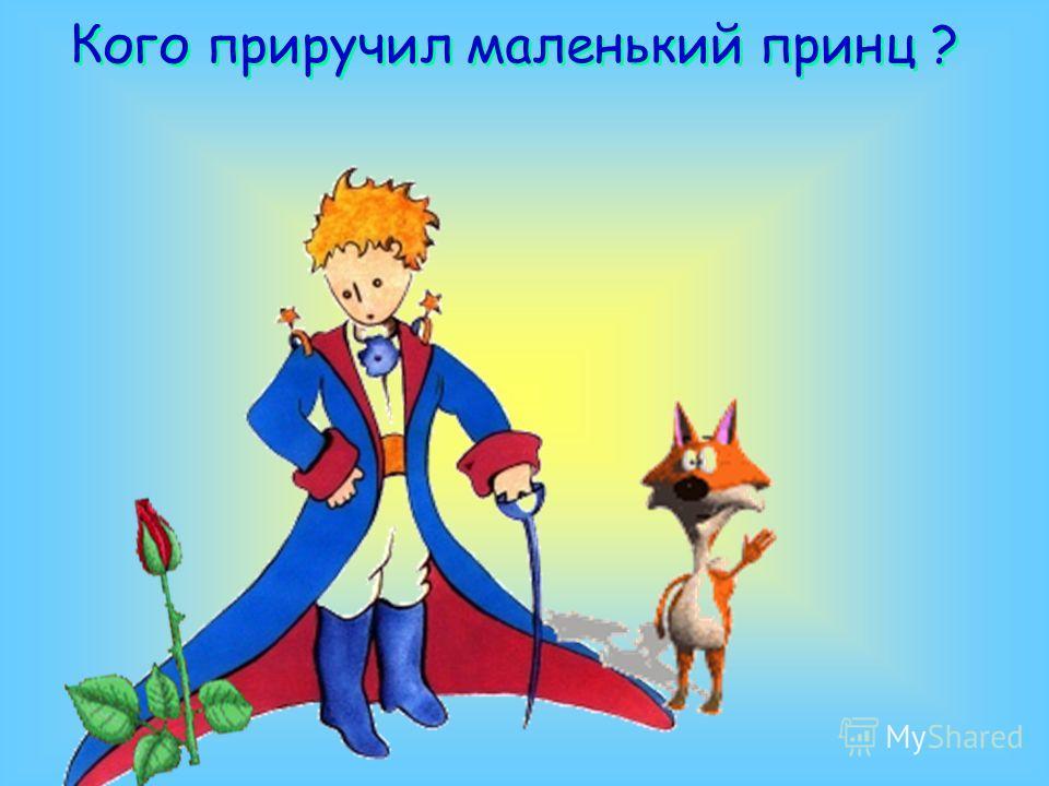 Кого приручил маленький принц ?