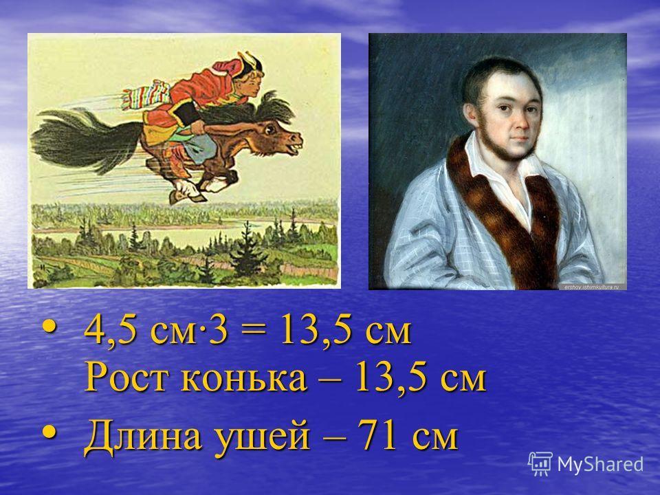 4,5 см3 = 13,5 см Рост конька – 13,5 см Длина ушей – 71 см