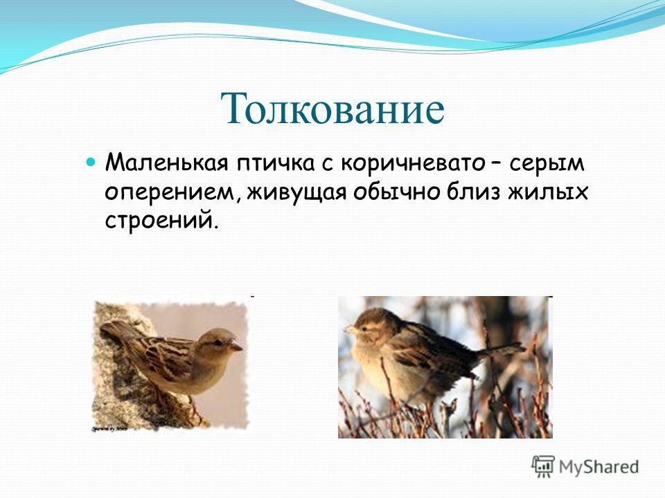 Толкование Маленькая птичка с коричневато – серым оперением, живущая обычно близ жилых строений.