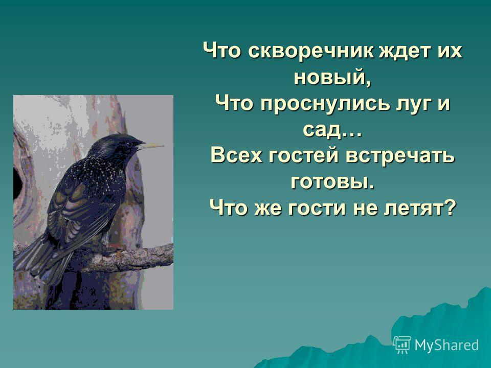 Что скворечник ждет их новый, Что проснулись луг и сад… Всех гостей встречать готовы. Что же гости не летят?