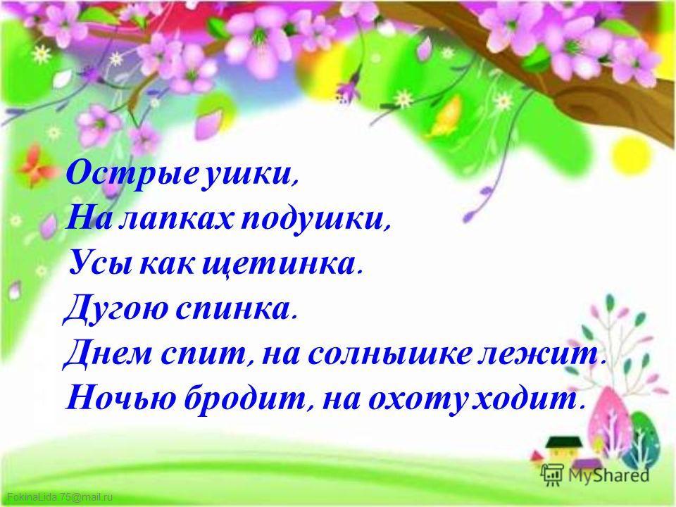 FokinaLida.75@mail.ru Острые ушки, На лапках подушки, Усы как щетинка. Дугою спинка. Днем спит, на солнышке лежит. Ночью бродит, на охоту ходит.