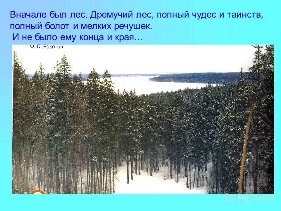Вначале был лес. Дремучий лес, полный чудес и таинств, полный болот и мелких речушек. И не было ему конца и края…
