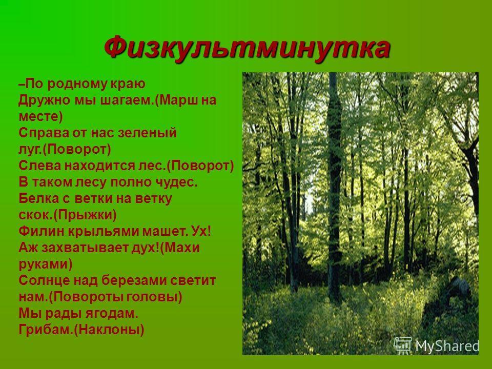 Физкультминутка – По родному краю Дружно мы шагаем.(Марш на месте) Справа от нас зеленый луг.(Поворот) Слева находится лес.(Поворот) В таком лесу полно чудес. Белка с ветки на ветку скок.(Прыжки) Филин крыльями машет. Ух! Аж захватывает дух!(Махи рук