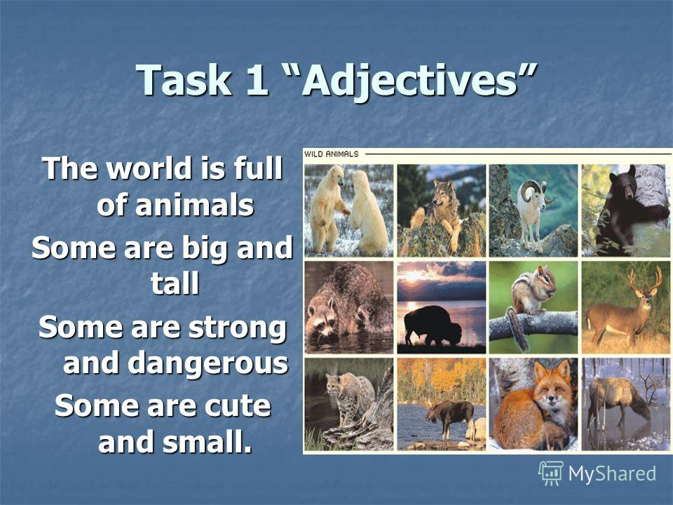 Task 1 Adjectives The world is full of animals Some are big and tall Some are strong and dangerous Some are cute and small.