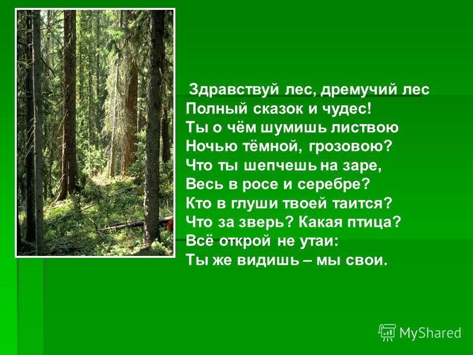 Здравствуй лес, дремучий лес Полный сказок и чудес! Ты о чём шумишь листвою Ночью тёмной, грозовою? Что ты шепчешь на заре, Весь в росе и серебре? Кто в глуши твоей таится? Что за зверь? Какая птица? Всё открой не утаи: Ты же видишь – мы свои.