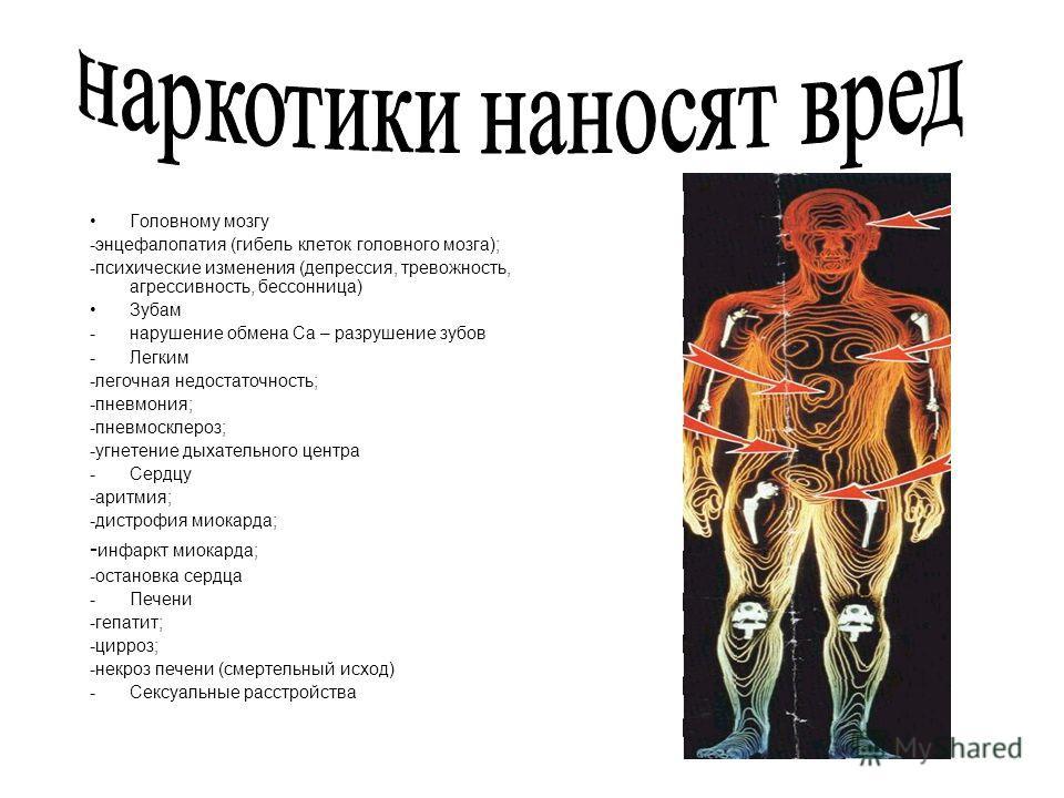 Головному мозгу -энцефалопатия (гибель клеток головного мозга); -психические изменения (депрессия, тревожность, агрессивность, бессонница) Зубам -нарушение обмена Са – разрушение зубов -Легким -легочная недостаточность; -пневмония; -пневмосклероз; -у
