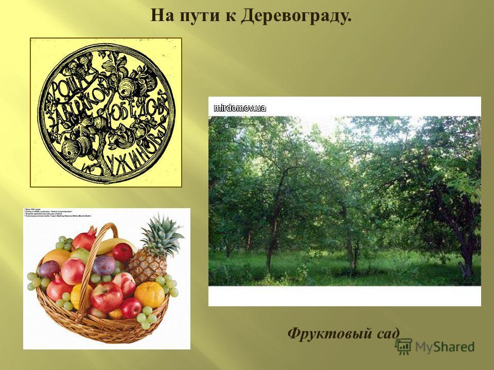 На пути к Деревограду. Фруктовый сад