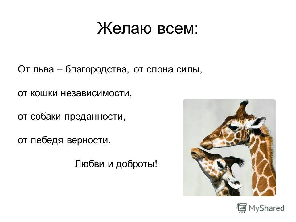 Желаю всем: От льва – благородства, от слона силы, от кошки независимости, от собаки преданности, от лебедя верности. Любви и доброты!