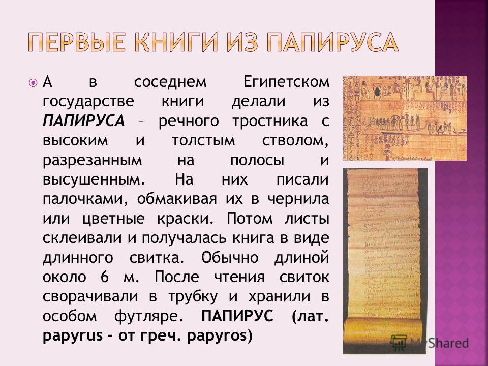 А в соседнем Египетском государстве книги делали из ПАПИРУСА – речного тростника с высоким и толстым стволом, разрезанным на полосы и высушенным. На них писали палочками, обмакивая их в чернила или цветные краски. Потом листы склеивали и получалась к
