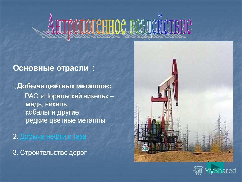 Основные отрасли : 1. Добыча цветных металлов: РАО «Норильский никель» – медь, никель, кобальт и другие редкие цветные металлы 2. Добыча нефти и газаДобыча нефти и газа 3. Строительство дорог