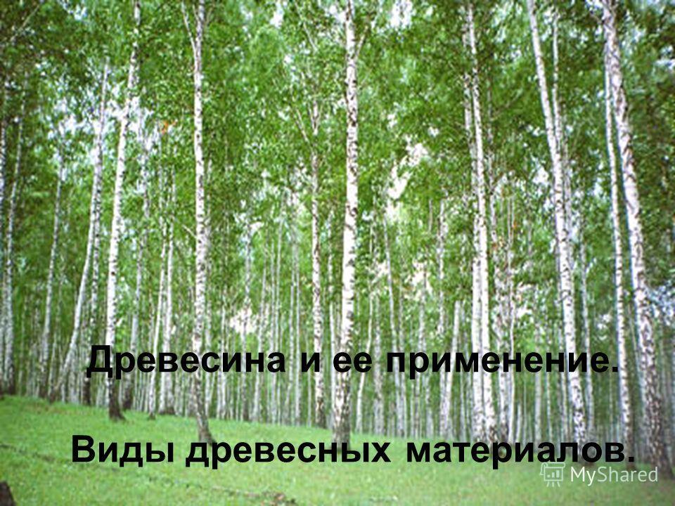 Древесина и ее применение. Виды древесных материалов.