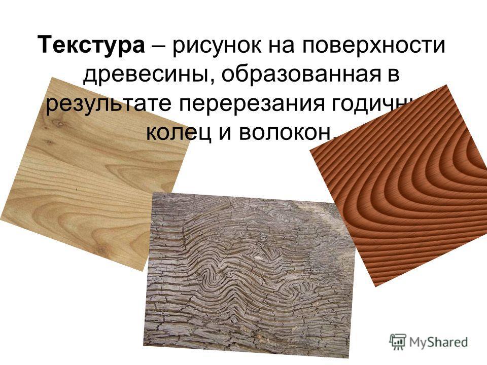 Текстура – рисунок на поверхности древесины, образованная в результате перерезания годичных колец и волокон.