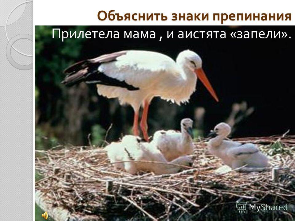 Объяснить знаки препинания Прилетела мама, и аистята « запели ».