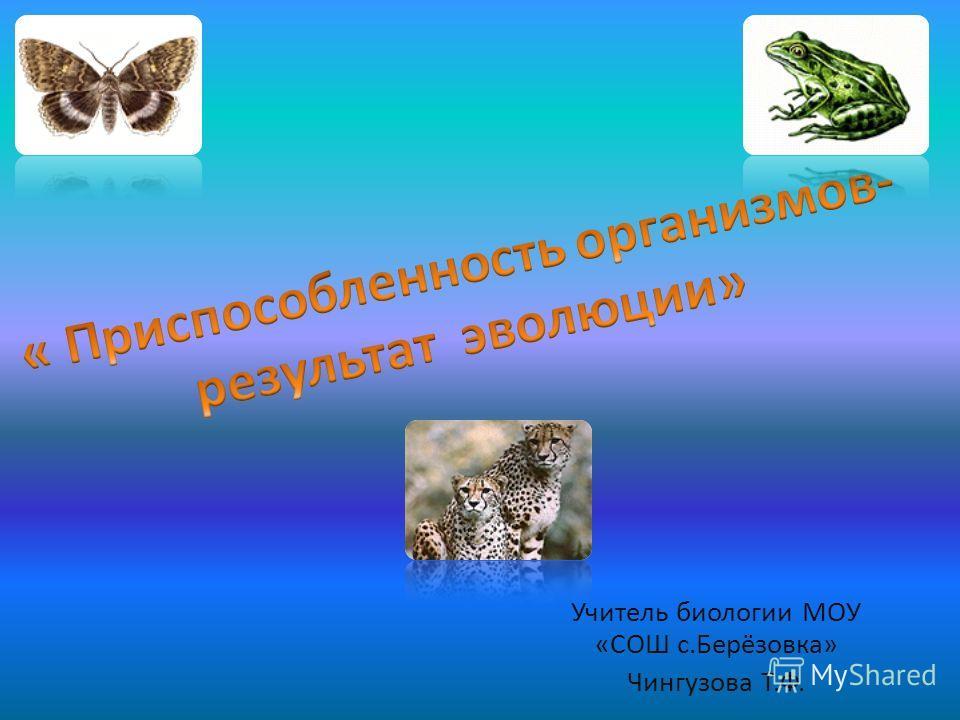 Учитель биологии МОУ «СОШ с.Берёзовка» Чингузова Т.Ф.