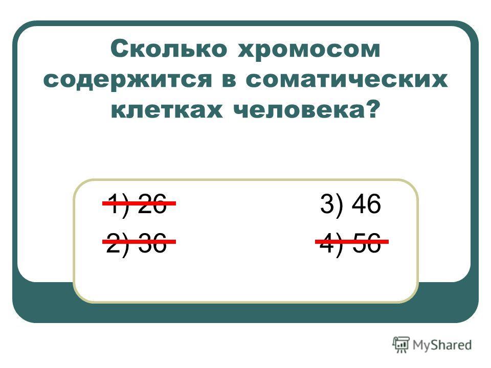 Сколько хромосом содержится в соматических клетках человека? 1) 26 3) 46 2) 36 4) 56