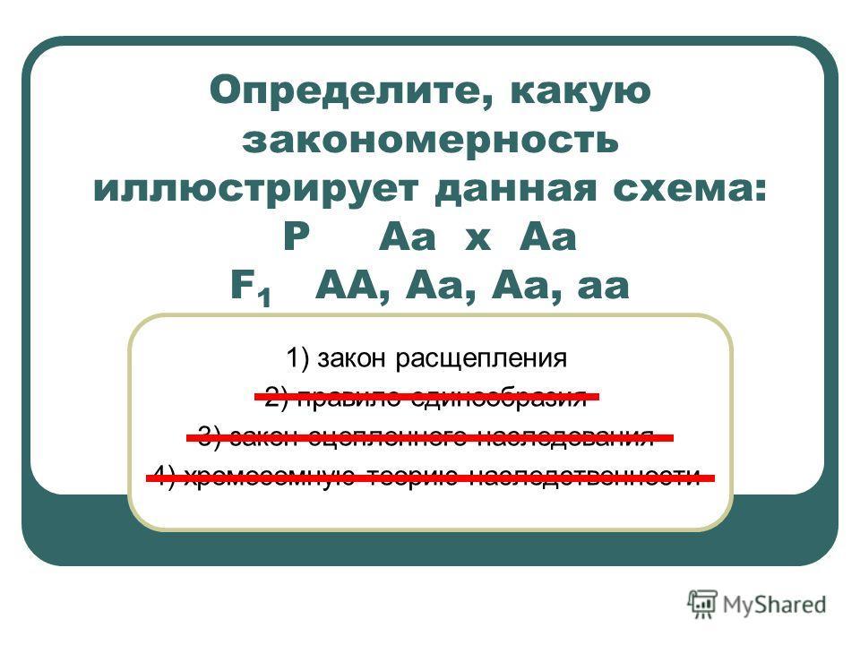Определите, какую закономерность иллюстрирует данная схема: Р Аа х Аа F 1 АА, Аа, Аа, аа 1) закон расщепления 2) правило единообразия 3) закон сцепленного наследования 4) хромосомную теорию наследственности