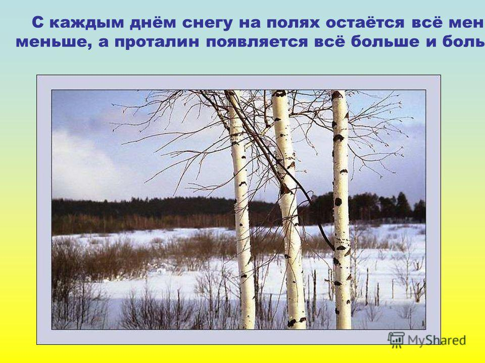 С каждым днём снегу на полях остаётся всё меньше и меньше, а проталин появляется всё больше и больше. С каждым днём снегу на полях остаётся всё меньше и меньше, а проталин появляется всё больше и больше.