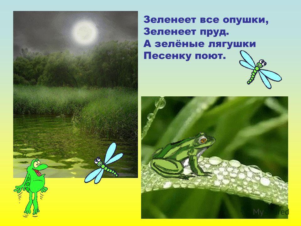 Зеленеет все опушки, Зеленеет пруд. А зелёные лягушки Песенку поют. Зеленеет все опушки, зеленеет пруд. А зелёные лягушки песенку поют.