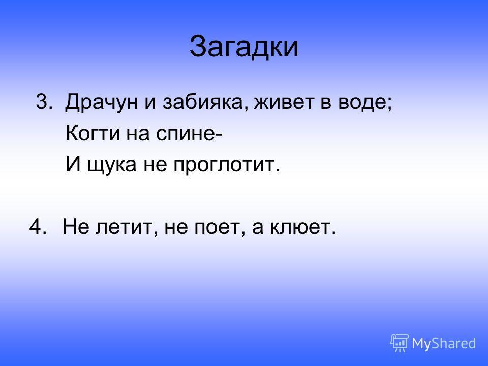 Загадки 3. Драчун и забияка, живет в воде; Когти на спине- И щука не проглотит. 4.Не летит, не поет, а клюет.