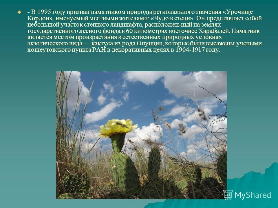 - В 1995 году признан памятником природы регионального значения «Урочище Кордон», именуемый местными жителями: «Чудо в степи». Он представляет собой небольшой участок степного ландшафта, расположен-ный на землях государственного лесного фонда в 60 ки