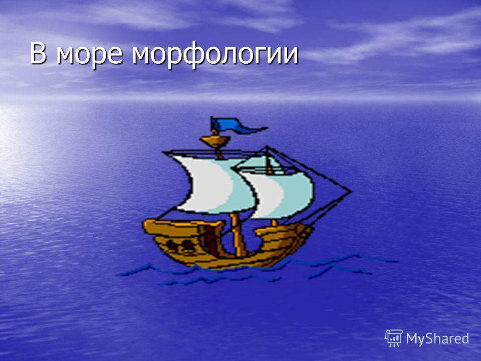 В море морфологии
