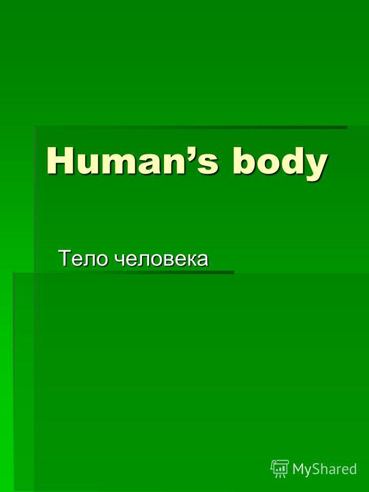 Humans body Тело человека