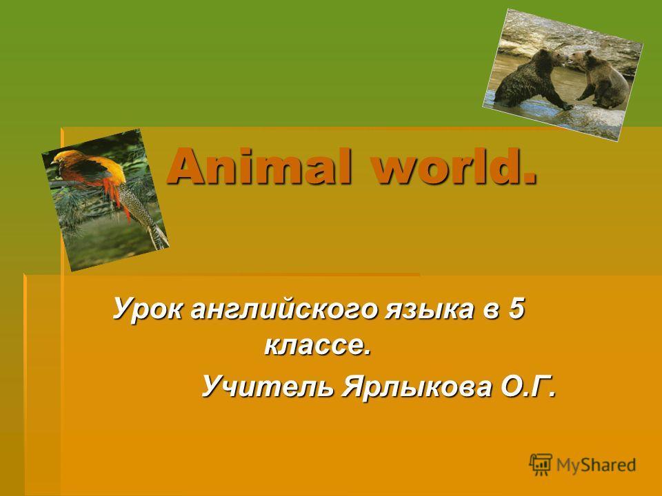 Animal world. Урок английского языка в 5 классе. Учитель Ярлыкова О.Г.