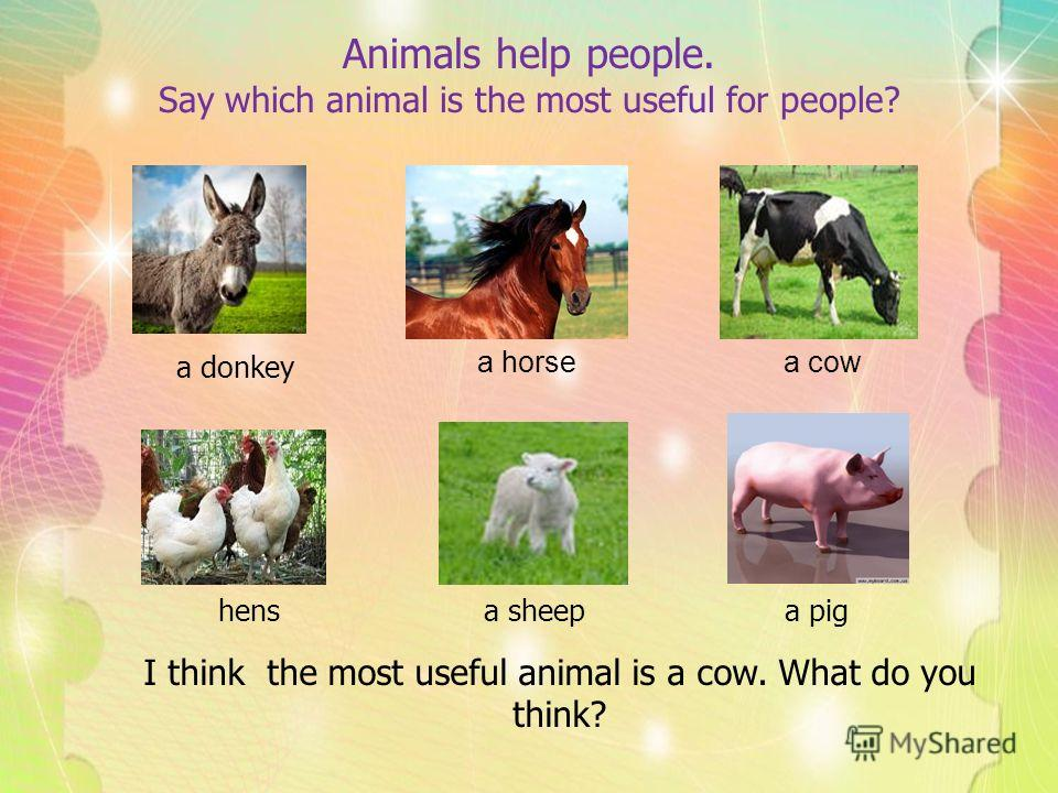 Animals help people. Say which animal is the most useful for people? I think the most useful animal is a cow. What do you think? a donkey a horsea cow hensa sheepa pig