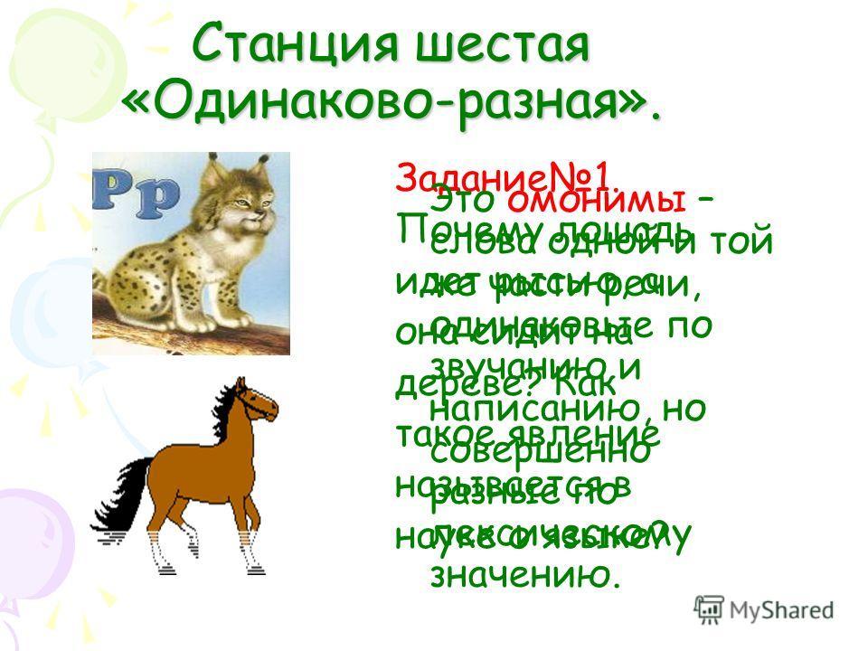 Станция шестая «Одинаково-разная». Задание1. Почему лошадь идет рысью, а она сидит на дереве? Как такое явление называется в науке о языке? Это омонимы – слова одной и той же части речи, одинаковые по звучанию и написанию, но совершенно разные по лек