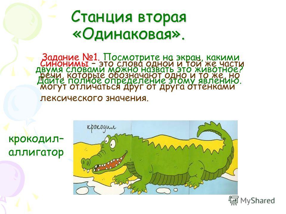 Станция вторая «Одинаковая». Задание 1. Посмотрите на экран, какими двумя словами можно назвать это животное? Дайте полное определение этому явлению. крокодил– аллигатор Синонимы – это слова одной и той же части речи, которые обозначают одно и то же,
