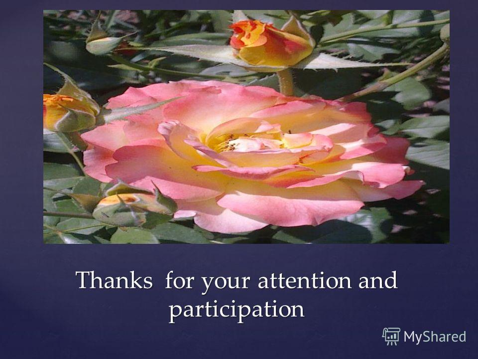 Thanks for your attention and participation