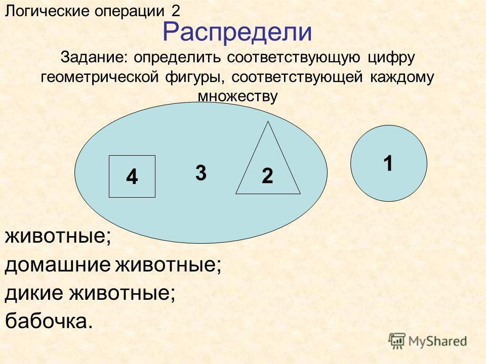 Распредели Задание: определить соответствующую цифру геометрической фигуры, соответствующей каждому множеству Логические операции 2 животные; домашние животные; дикие животные; бабочка. 3 1 4 2