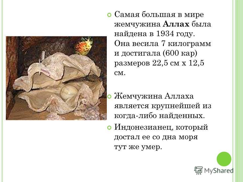 Самая большая в мире жемчужина Аллах была найдена в 1934 году. Она весила 7 килограмм и достигала (600 кар) размеров 22,5 см х 12,5 см. Жемчужина Аллаха является крупнейшей из когда-либо найденных. Индонезианец, который достал ее со дна моря тут же у