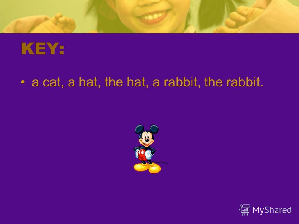 KEY: a cat, a hat, the hat, a rabbit, the rabbit.