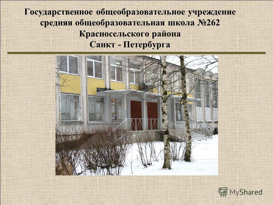 Государственное общеобразовательное учреждение средняя общеобразовательная школа 262 Красносельского района Санкт - Петербурга