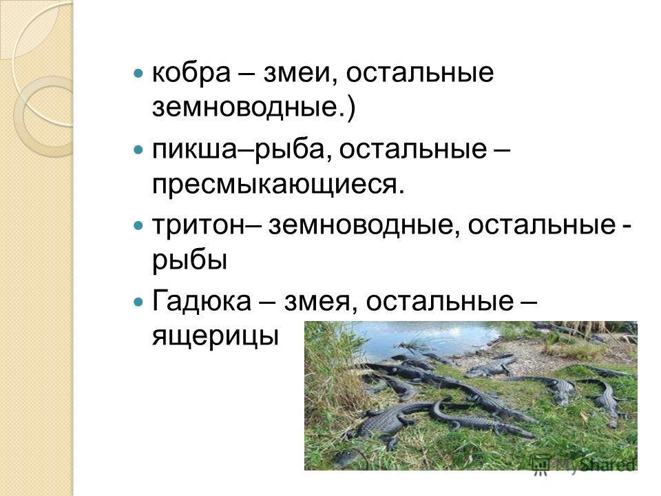 кобра – змеи, остальные земноводные.) пикша–рыба, остальные – пресмыкающиеся. тритон– земноводные, остальные - рыбы Гадюка – змея, остальные – ящерицы