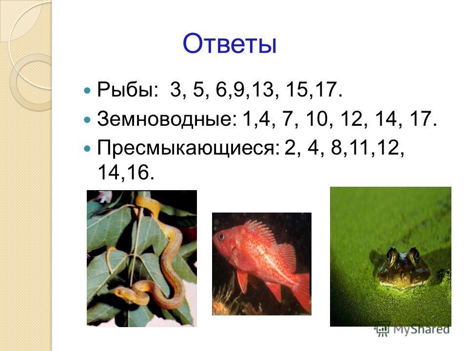Ответы Рыбы: 3, 5, 6,9,13, 15,17. Земноводные: 1,4, 7, 10, 12, 14, 17. Пресмыкающиеся: 2, 4, 8,11,12, 14,16.