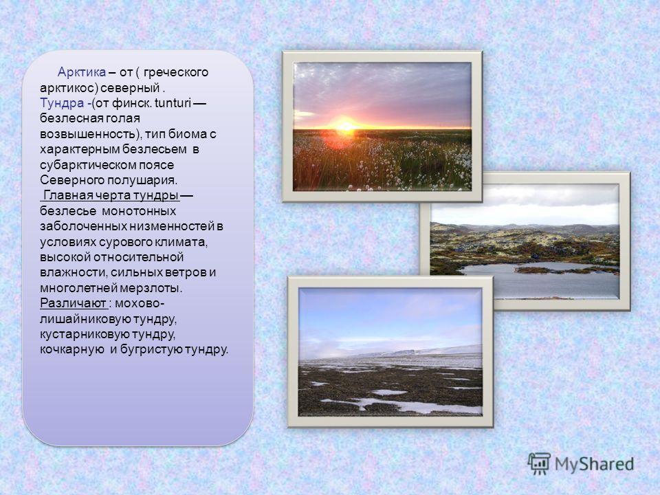 Арктика – от ( греческого арктикос) северный. Тундра -(от финск. tunturi безлесная голая возвышенность), тип биома с характерным безлесьем в субарктическом поясе Северного полушария. Главная черта тундры безлесье монотонных заболоченных низменностей