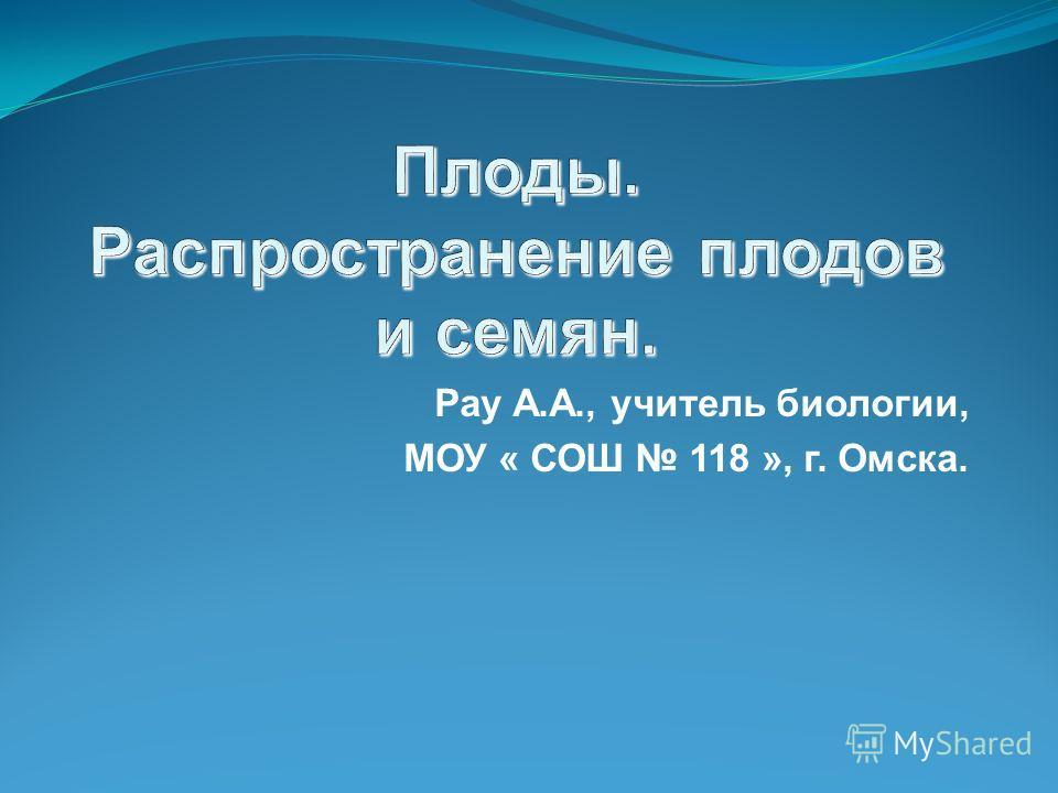Рау А.А., учитель биологии, МОУ « СОШ 118 », г. Омска.