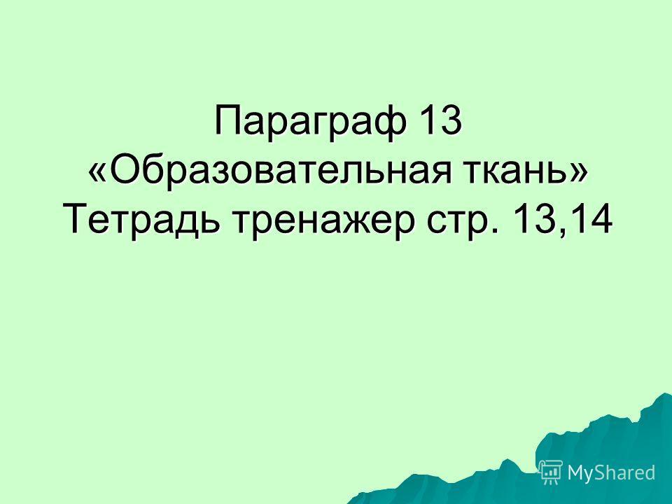 Параграф 13 «Образовательная ткань» Тетрадь тренажер стр. 13,14