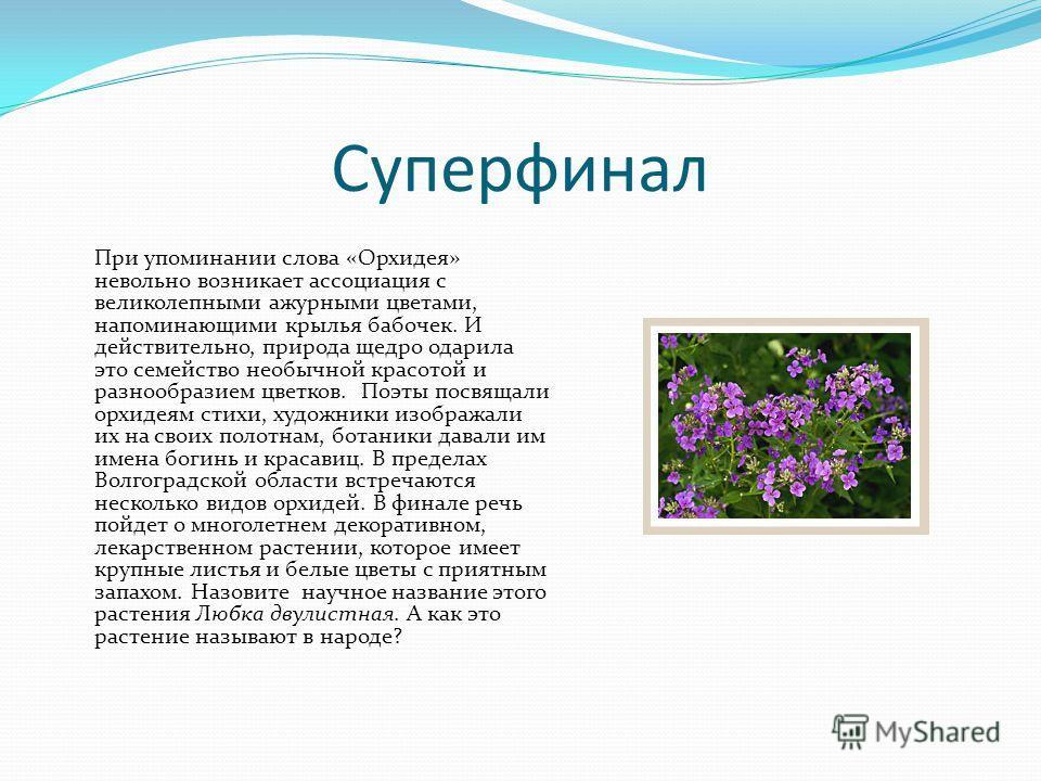 Суперфинал При упоминании слова «Орхидея» невольно возникает ассоциация с великолепными ажурными цветами, напоминающими крылья бабочек. И действительно, природа щедро одарила это семейство необычной красотой и разнообразием цветков. Поэты посвящали о